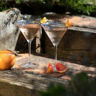 Ouverture du blog Mistral Gin